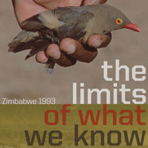 Announcement: The Limits of What We Know Film Release